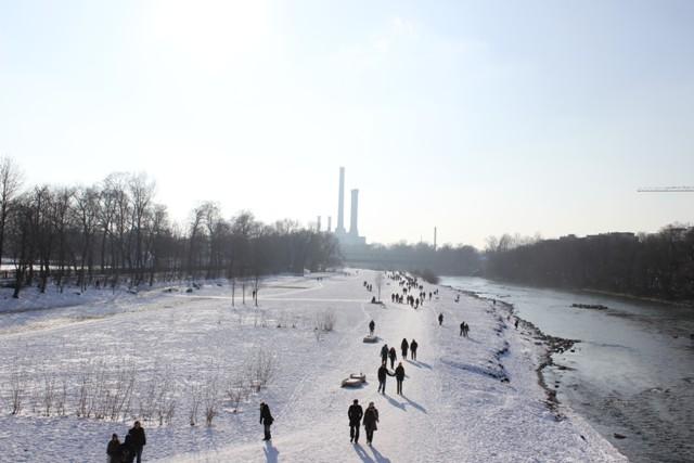 die Au im Winter