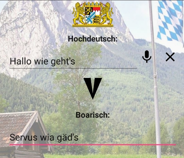 Traduttore bavarese