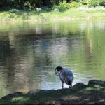 Romantische Orte und Plätze: Tipps für Pärchen