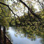 Freizeittipps bei schönem Wetter in München – Biergärten, Sportevents, Parks