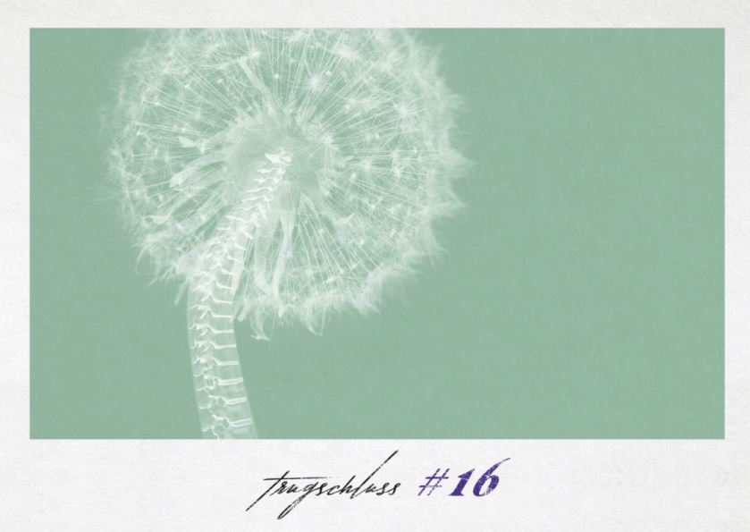 trugschluss #16: other other