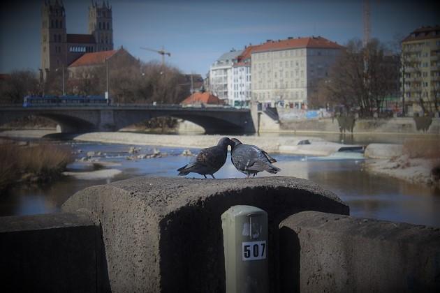 Singles in München kennenlernen